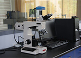 Video microscope - Equipment Gallery