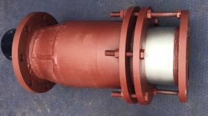 Sleeve Type Expansion Joints paint 300x168 - Sleeve-Type-Expansion-Joints_paint