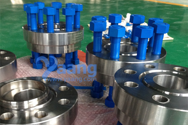 Alloy 625 Double Studded Adapter Flange