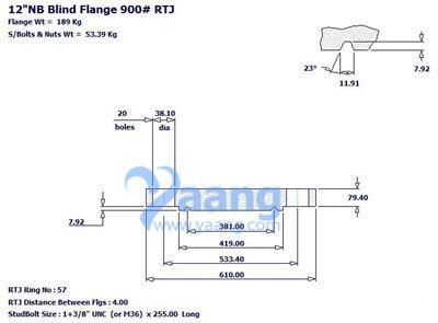 20181241833373458575 - ANSI B16.5 316L Blind Flange RTJ 12 Inch 900# R57