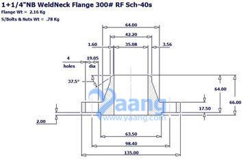 "201919521565696216 - ANSI B16.5 ASTM B564 UNS N08031 WNRF Flange 1-1/4"" CL300 Sch40S"