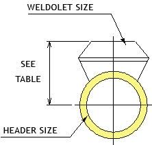 212 bn ds c12 pipe fitting weldolet - Steel Weldolet