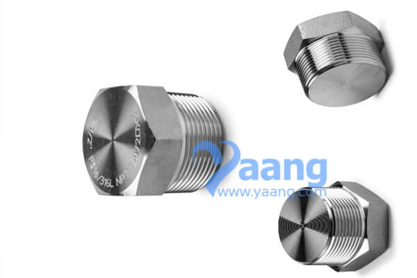 ASME B16.11 Threaded Hex Head Plug