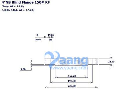 2019313199205073565 - ANSI B16.5 ASTM A182 F53 Blind Flange RF 4 Inch 150#