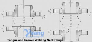 2019431987394214 300x137 - Welding Neck Flange Tongue and Groove