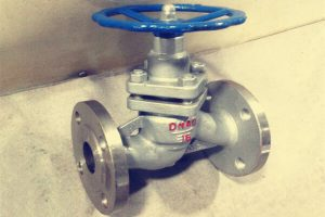 what is a plunger valve 300x200 - What is a plunger valve?