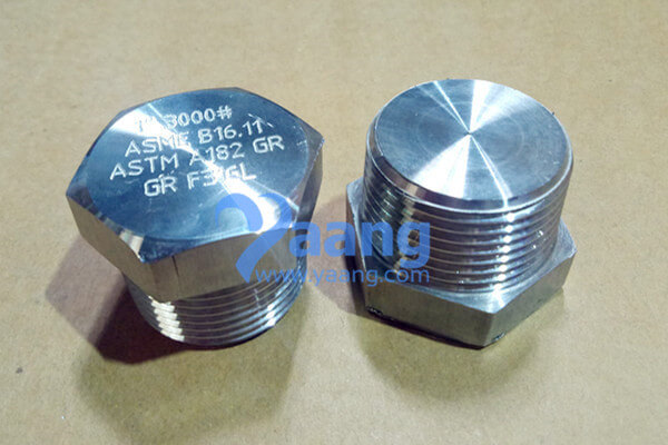 ASME B16.11 ASTM A182 GR.F316L Threaded Hex Head Plug DN25 3000#