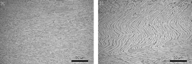 20191006144059 58014 - Microstructure, Texture and Mechanical Properties of TA32 Titanium Alloy Thick Plate