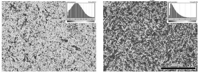 20191006151752 29241 - Microstructure, Texture and Mechanical Properties of TA32 Titanium Alloy Thick Plate