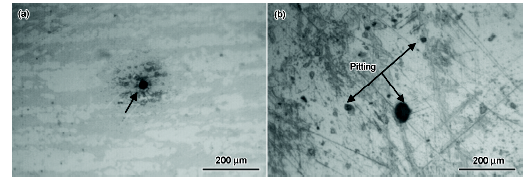 img 3 1 - Electrochemical corrosion behavior of 2205 and 316L stainless steel in hydrofluoric acid