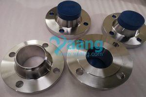 asme b16 5 astm b564 alloy 825 wnrf flange 3 inch sch40 150 300x200 - ASME B16.5 ASTM B564 Alloy 825 WNRF Flange 3 Inch SCH40 150#