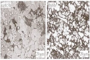 effect of middle temperature aging on precipitated phase and intergranular corrosion properties of 2205 duplex stainless steel 300x200 - Effect of Middle Temperature Aging on Precipitated Phase and Intergranular Corrosion Properties of 2205 Duplex Stainless Steel