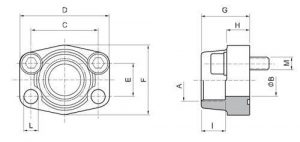 SAE BSPP thread flanges drawing 300x142 - SAE-BSPP-thread-flanges-drawing